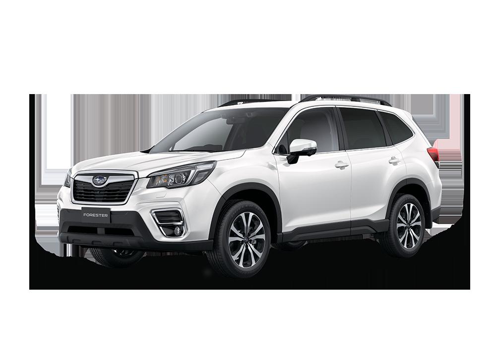 2019 New Hyundai Santa Fe